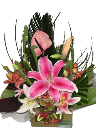tulips,lilies,anthiriums