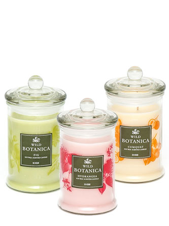 Assorted Wild Botanica Soy Wax Scented Candle 50 Hours