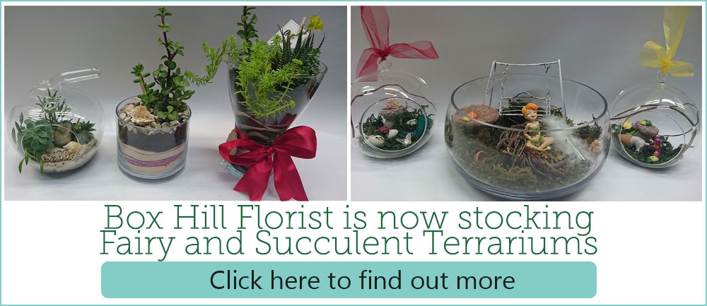 fairy-and-succulent-terrarium