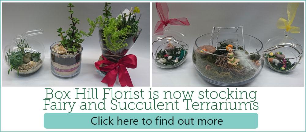 fairy-and-succulent-terrarium
