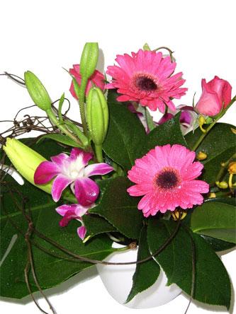 Gerberas, orchids and lilium