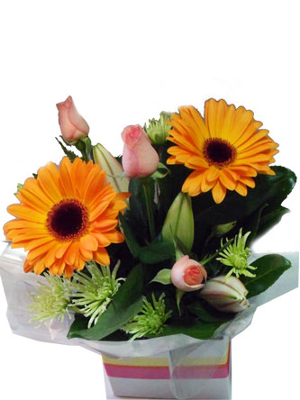 Posy box os gerberas, roses and chrysanthemum